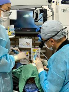 歯根端切除術、外科手術